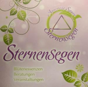 p1150069_oberer-teil-flyer